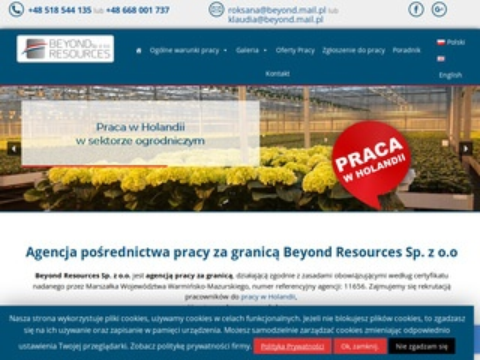 Beyondresources.pl - oferty pracy