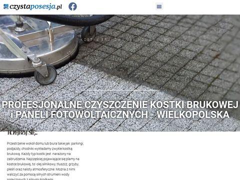 Czystaposesja.pl