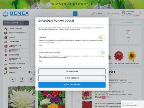 Benex - producent cebul kwiatowych
