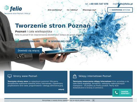 Felio.pl tworzenie stron Poznań