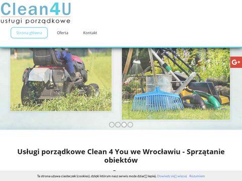 Clean4usc.pl czyszczenie