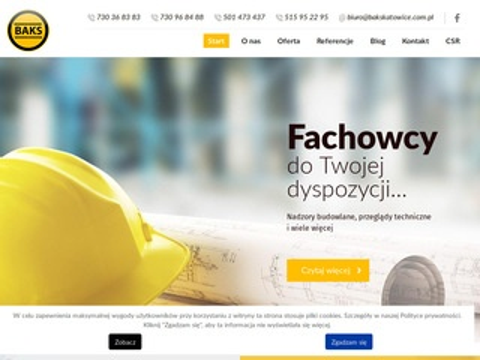Bakskatowice.pl nadzór
