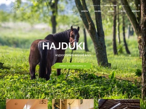 Hajduki.info