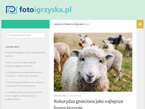 Fotoigrzyska.pl - fotografia