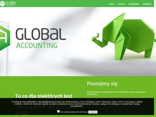 Global Accounting analizy