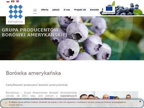 Berrygroup.pl