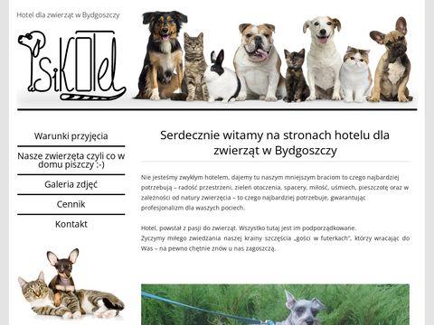 Hotel dla psów Bydgoszcz