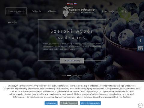 Szetynscy.pl